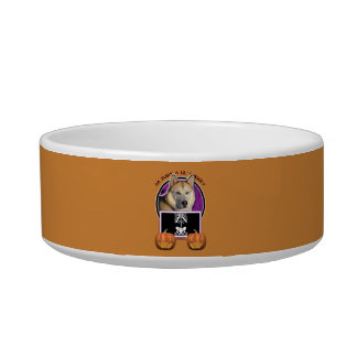 Halloween Just a Lil Spooky Siberian Husky Copper Cat Water Bowl