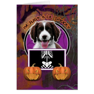 Halloween - Just a Lil Spooky - Springer Spaniel Card