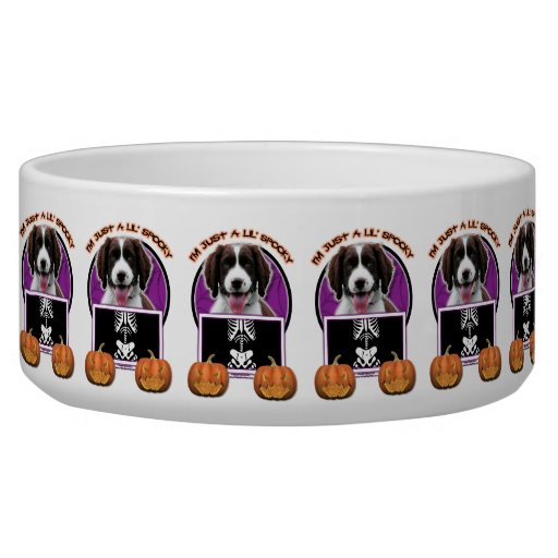 Halloween - Just a Lil Spooky - Springer Spaniel Pet Water Bowl
