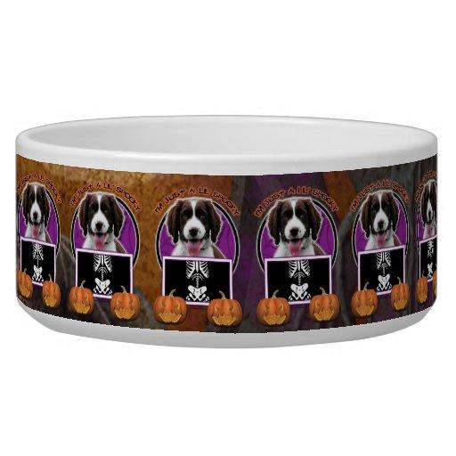 Halloween - Just a Lil Spooky - Springer Spaniel Dog Bowl