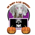 Halloween - Just a Lil Spooky - Weimaraner Acrylic Cut Outs
