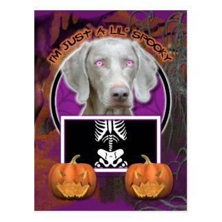 Halloween - Just a Lil Spooky - Weimaraner Postcard