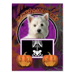 Halloween - Just a Lil Spooky -Westie Postcard