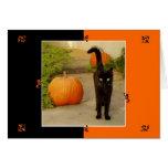 Halloween Kitty Note Card
