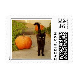 Halloween Kitty Postage Stamp