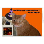 Halloween Kitty - Wear What Card