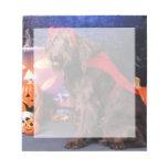 Halloween - LabraDoodle - máximos Blocs