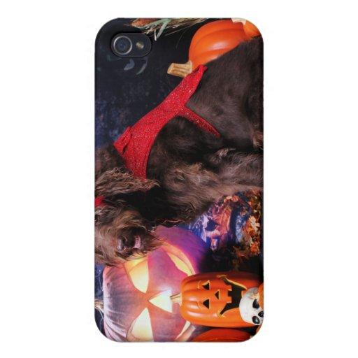 Halloween - LabraDoodle - máximos iPhone 4 Carcasa