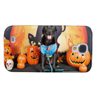 Halloween - Labrador - máximos