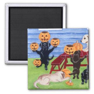 ¡Halloween Labradors! Imán Cuadrado