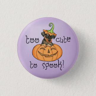 Halloween Min Pin