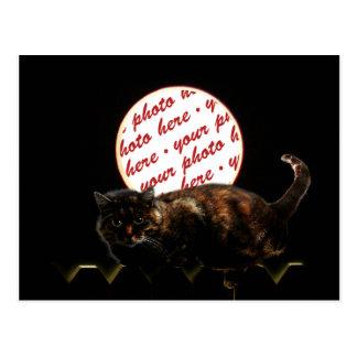 Halloween Moonlit Cat Photo Frame Post Card