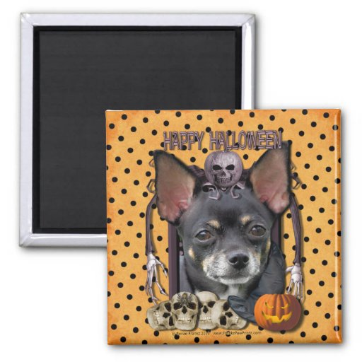 Halloween Nightmare - Chihuahua - Isabella 2 Inch Square Magnet