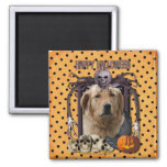Halloween Nightmare - Golden Retriever - Mickey Fridge Magnets