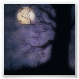Halloween Nite Photo Backdrop Posters