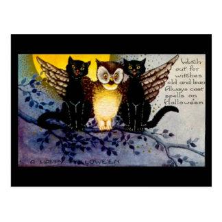 Halloween Owl and Black Cats Postcard