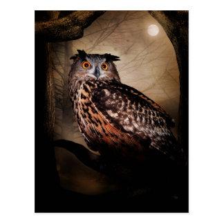 Halloween Owl Postcard
