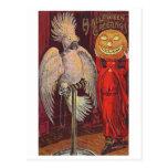 Halloween Parrot and Pumpkin Post Cards