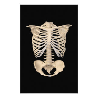 Halloween Party Scary Zombie Cage Skeleton Stationery