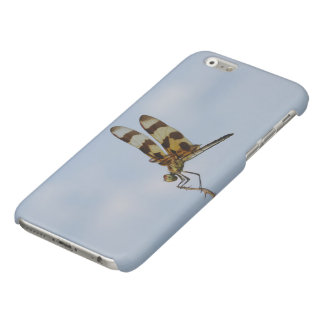Halloween Pennant Glossy iPhone 6 Case