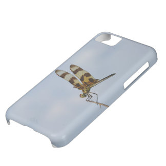 Halloween Pennant iPhone 5C Covers