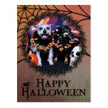 Halloween - pensamiento del Schnauzer - Chiweenie Postal