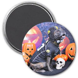 Halloween - Pitbull - Marley Imanes De Nevera