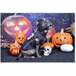 Halloween - Pitbull - Marley Photo Sculptures