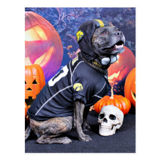Halloween - Pitbull - Marley Tarjetas Postales