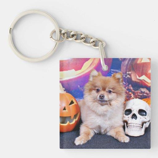 Halloween - Pomeranian - Simba Llaveros
