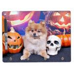 Halloween - Pomeranian - Simba Pizarra