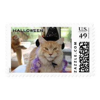 Halloween Postage with Maine Coon Cat as Witch