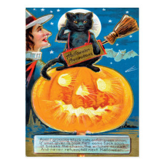 Hallowe'en Precautions Postcard