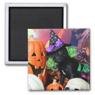 Halloween - Pug - Daisy Mae Fridge Magnets