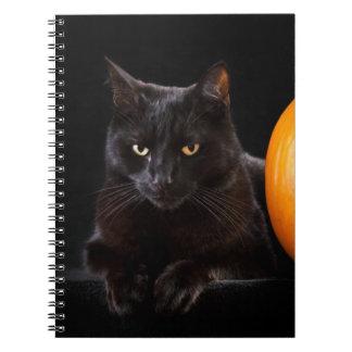 Halloween pumpkin and black cat spiral notebooks