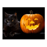 Halloween pumpkin and black cat postcard