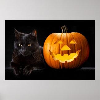 Halloween pumpkin and black cat print