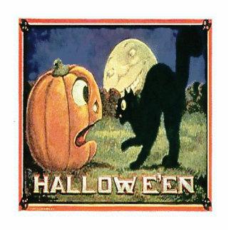 Halloween Pumpkin Cat Photo Sculpture