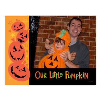 Halloween Pumpkins Photo Postcard