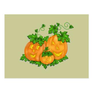 Halloween Pumpkins Post Card