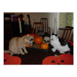 Halloween Scary Cats Poster