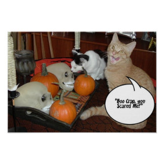 Halloween Scary Cats Print