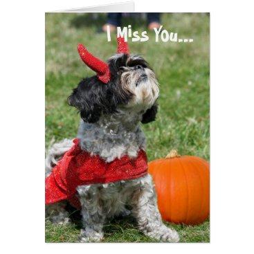 Halloween Themed Halloween Shih Tzu dog Card