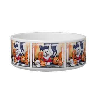 Halloween - Shih Tzu - Jhanggoon Cat Food Bowls
