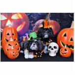 Halloween - Shih Tzu - volantes Riley Esculturas Fotograficas