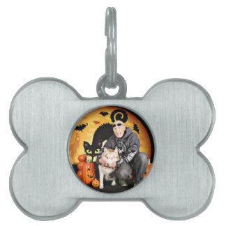 Halloween - Siberian Husky - Nala Pet ID Tags