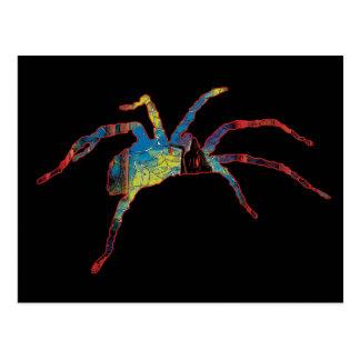 Halloween spider scary creepy crawly cards postcard