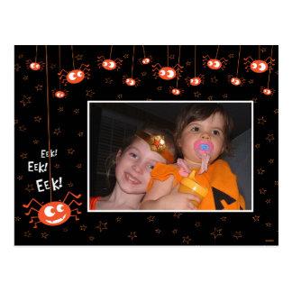 Halloween Spiders and Web Photo Postcard