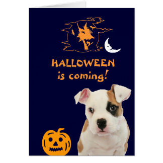 Halloween: Spooky pup Card