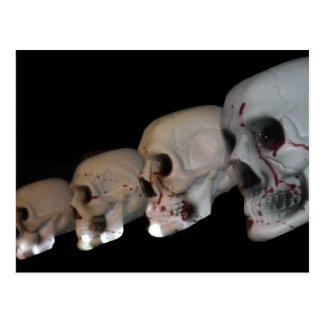 Halloween Spy Girl, Skulls and Skeletons Postcard